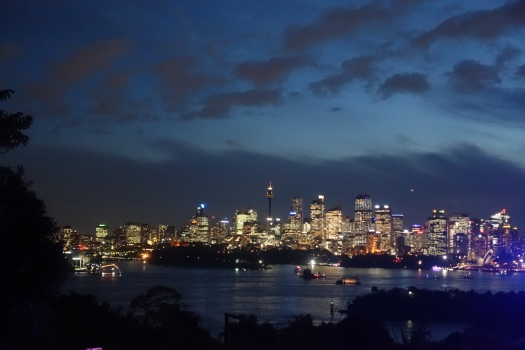 Taronga zoo during Vivid with Sydney lit up over the harbour