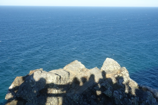 Whale watching at Cape Byron Lighthouse